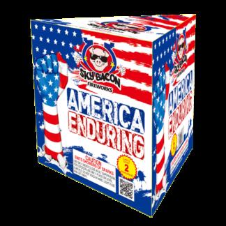 "alt=""america enduring firework at nj fireworks store near nyc"""